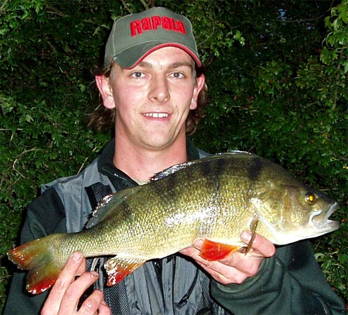 Lure Fishing Article for Perch by Andrew Kennedy