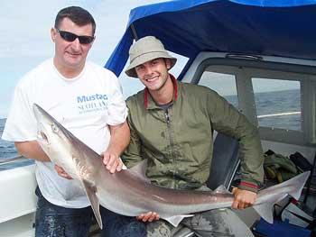 Tope fishing, shark fishing uk, Galeorhinus galeus, sea angling